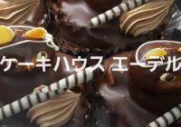 千葉県の武装した狸ケーキ