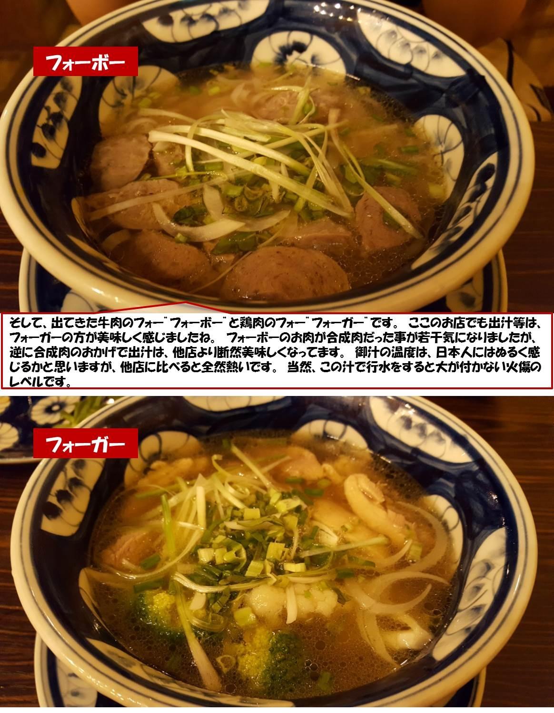 """そして、出てきた牛肉のフォー""""フォーボー""""と鶏肉のフォー""""フォーガー""""です。 ここのお店でも出汁等は、フォーガーの方が美味しく感じましたね。 フォーボーのお肉が合成肉だった事が若干気になりましたが、逆に合成肉のおかげで出汁は、他店より断然美味しくなってます。 御汁の温度は、日本人にはぬるく感じるかと思いますが、他店に比べると全然熱いです。 当然、この汁で行水をすると大が付かない火傷のレベルです。"""